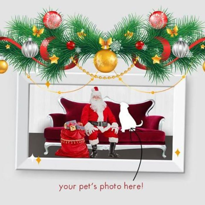 Santa Pet Photography at Pet City