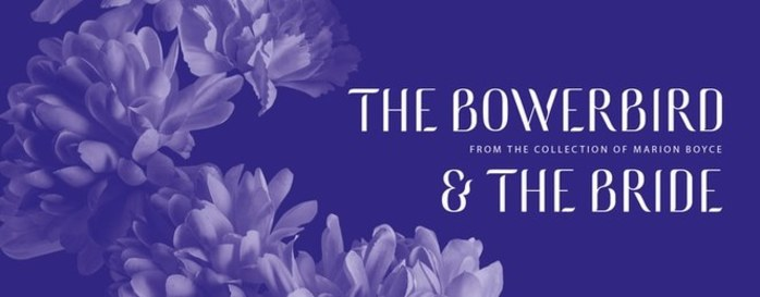 The Bowerbird and The Bride Exhibition